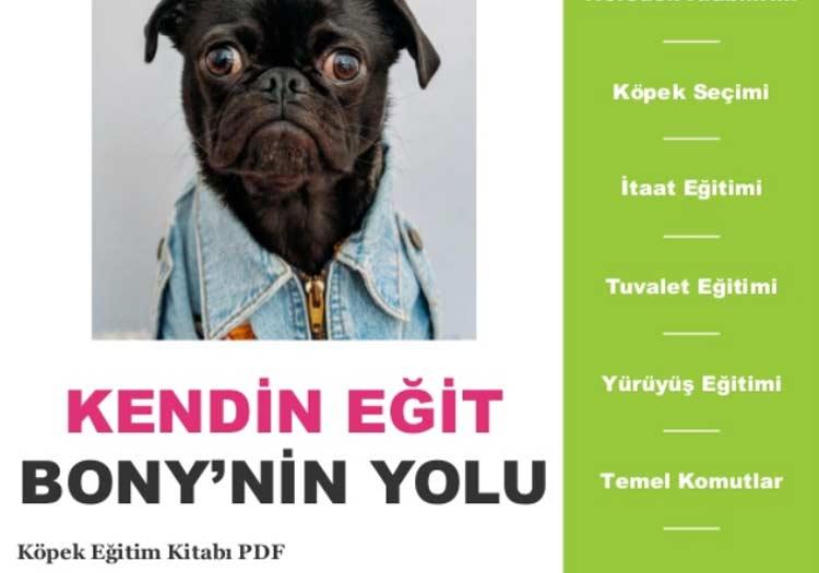 köpek eğitim kitabı PDF